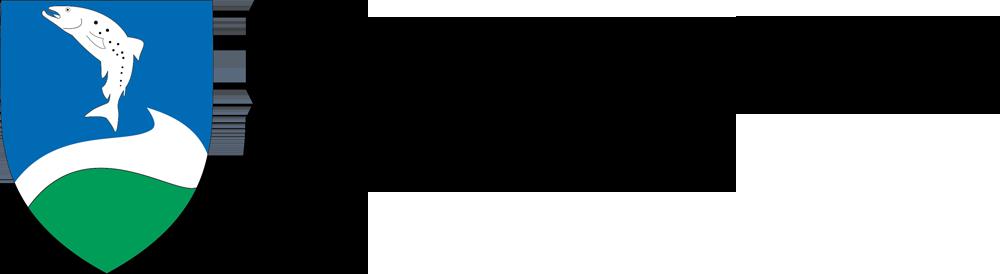 Ringkøbing-Skjern